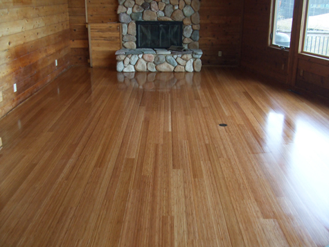 Bamboo Flooring Gallery: Living Room